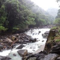 The Beast Trail (50km)